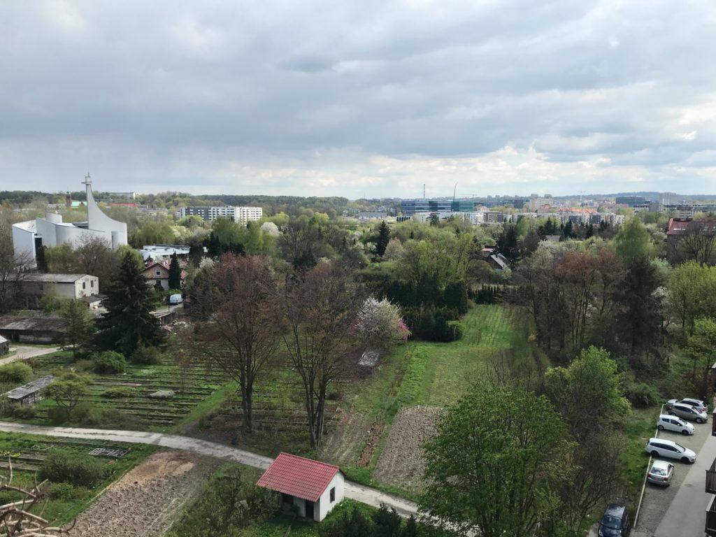 osiedle podwawelkie widok na szkolke drzew i krzewów